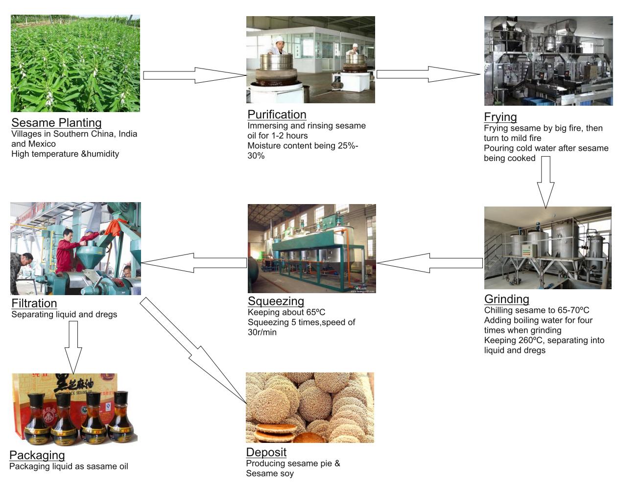 T1_Sesame Oil_production map