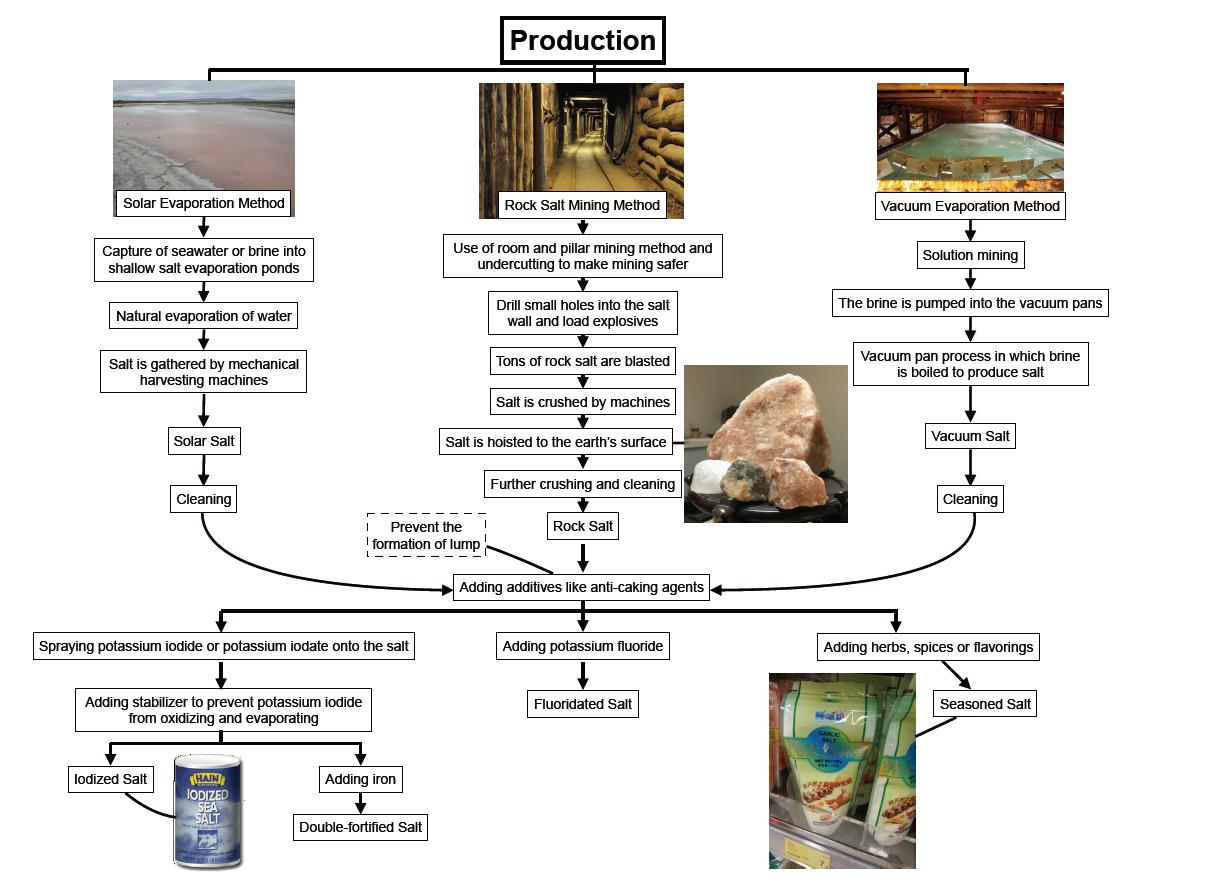 T4_salt_production map