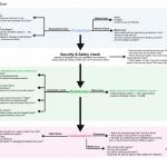 Choy Sum flow chart
