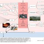 Fresh-water fish distribution map