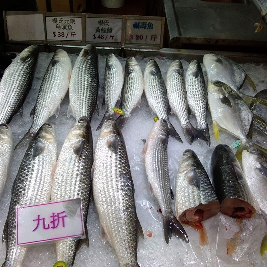 fresh-water fish (wild and farmed)
