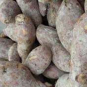 potatoes and sweet  potatoes