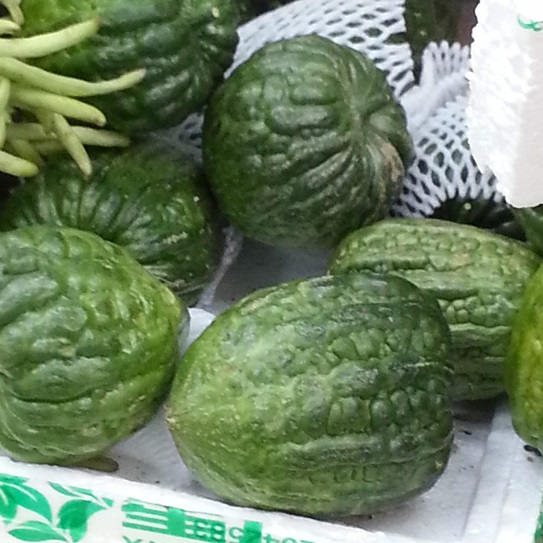 Chinese melons/gourds