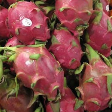 dragon fruit and pineapple