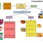 Dragon fruit-Pinapple consumption