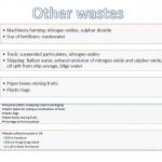 Lychee-Bananna waste 2